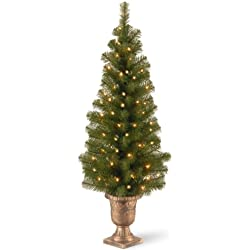 National Tree 4 Foot Montclair Spruce Entrance Tree with 50 Clear Lights (MC7-308-40)