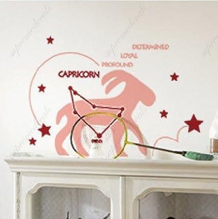 Mural de papel pintado con la Constelación de Capricornio