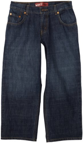 Levi's Boys 8-20 550 Relaxed Fit Jean Husky, DK CROSSHATCH, 16 (550 Relaxed Tapered Leg)