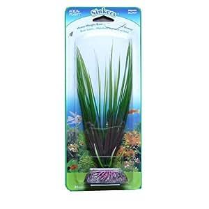 Aqua planta de plomos de pelo hierba–tamaño mediano