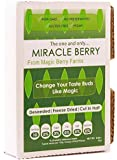 Miracle Berries, 10 berry halves, by Miracle Berry, freeze dried 100% Miracle fruit, Non-GMO, Grown in the USA, Makes sour sweet, Great for everyday use