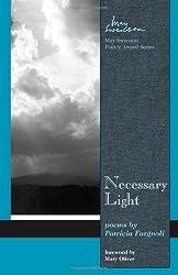 Necessary Light (Swenson Poetry Award)