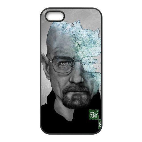 C-EUR Diy Breaking bad Hard Back Case for Iphone 5 5g - Breaking Diy Bad
