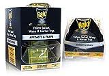 Raid Yellow Jacket and Wasp Trap (6-Pack), Outdoor