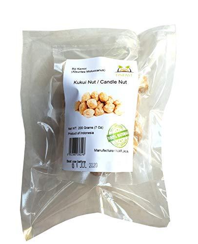 Kukui Nut - FINFAST Candle Nut / Kukui Nut