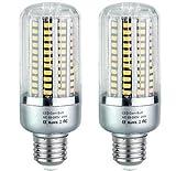 Bulbright 2 Pack LED Corn Light Bulb, 25W Equivalent to 180W, 2000Lumen, E26/27 Socket, 6000K Cool White, LED Light Bulb for Home, Warehouse, Garden, Backyard (6000K, 25 Watt)