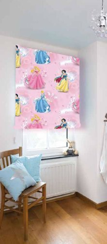 Childrens bedroom / playroom disney pink princess window ...