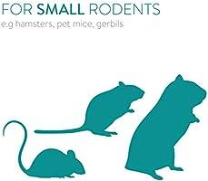 Navaris Casa de Juegos de Madera para roedores - Casa Laberinto con Escalera para Ratones hámster 39 x 20 x 27.5CM - para Usar Dentro de una Jaula: Amazon.es: Productos para mascotas