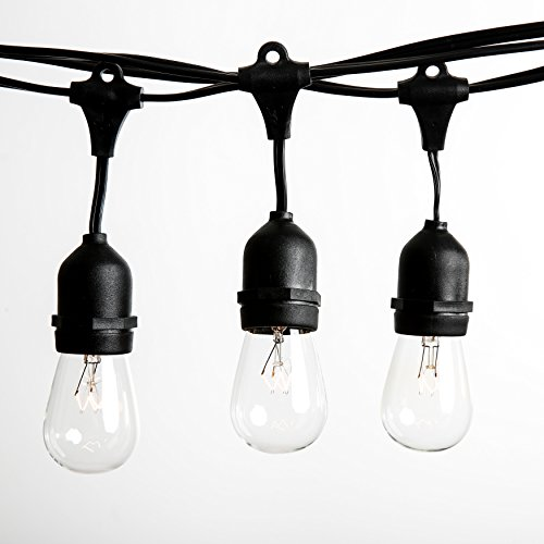 100 Foot E26 Commercial Outdoor String Lights with 50 Suspended Sockets and S14 Clear Bulbs for Weatherproof Heavy Duty Vintage Outside Lighting by Hometown Evolution, Inc.