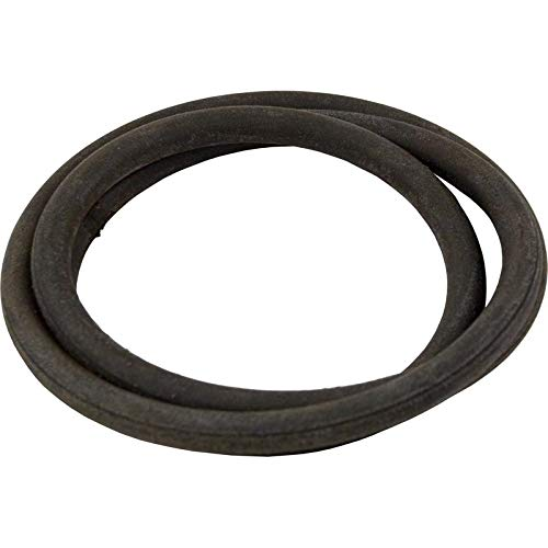 American O-ring Pentair (Pentair American Products O-Ring, CLN/CLR/Warrior, Tank Body, O-96 #57003200)