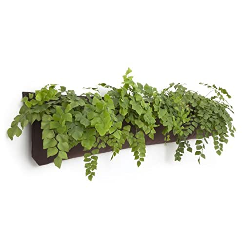 Living Wall Planter INDOOR/OUTDOOR USE W/Reservoir (Color: Chocolate)  Vertical Garden (Modular, Sustainable, Eco, Green) Hanging Planter. By Woolly  Pocket