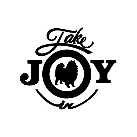 - Take Joy In Vinyl Decal Sticker (6