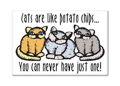 b57772f95 Image Unavailable. Image not available for. Color: Cats Are Like Potato  Chips ...
