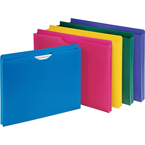 1InTheOffice Poly File Jacket File Folder, Letter 1