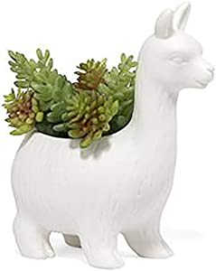 Kikkerland Lloyd The Llama Planter