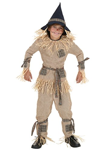 Fun Costumes Silly Scarecrow Costume Small