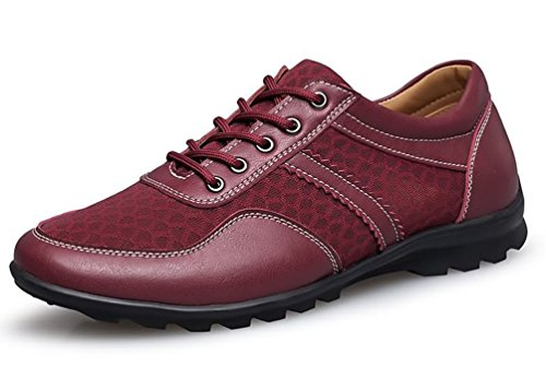 Hommes Showhow Maille Chaussures D'