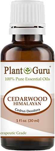 Cedarwood (Himalayan) Essential Oil 1 oz / 30 ml 100% Pure Undiluted Therapeutic Grade For Skin, Body and Hair Growth. Great For Aromatherapy Diffuser And DIY Soap ()