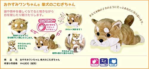 Good night doggy Shiba-chan
