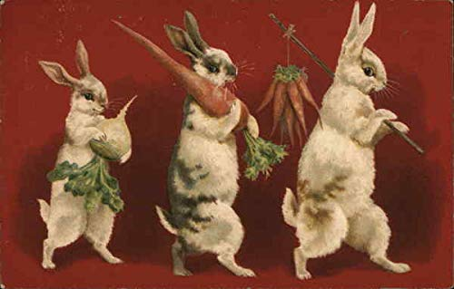 rabbits carrying carrots and an onion Other Animals Original Vintage Postcard from CardCow Vintage Postcards