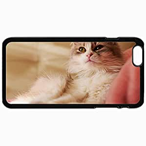 Personalized Protective Hardshell Back Hardcover For iPhone 6 Plus, Is Cat Cat Tissue Design In Black Case Color