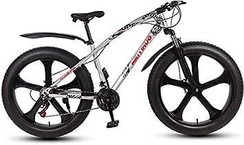 HYCy Bicicleta De Montaña Fat Tire Para Hombre Adulto,Bicis De Playa De Nieve De Velocidad Variable,Bicicleta De Crucero De Doble Freno De Disco,Ruedas Integradas De Aleación De Magnesio De 26 Pulgada: Amazon.es:
