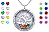Beffy Family Tree of Life Floating Charms Memory Locket, DIY Stainless Steel Pendant Necklace with Birthstones