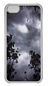 Customized iphone 5C PC Transparent Case - Wild Geese Personalized Cover
