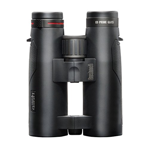 Bushnell Legend M Series 10x42 Binoculars, Black
