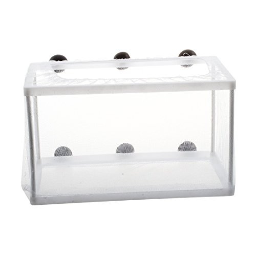 SODIAL(R) Fish Tank Plastic Frame White Net Fry Hatchery Breeder with Suction Cups