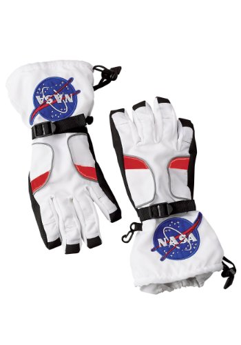 Aeromax Astronaut Gloves, size Medium, White, with NASA patches