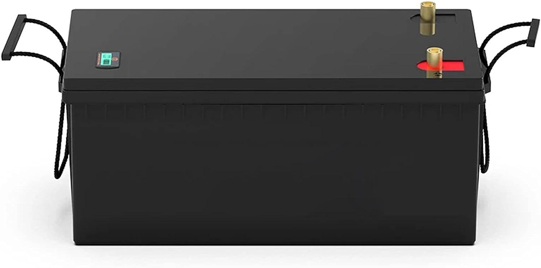 OANCO Paquete De Batería Recargable De Ciclo Profundo LiFePO4 De 24V Y 100Ah,BMS Integrado De 100A,Aplicaciones Fuera De La Red De RV Solar EV (Color : 24V 100Ah)