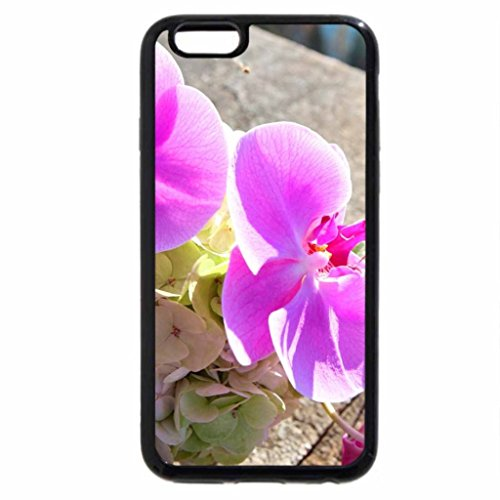 iPhone 6S / iPhone 6 Case (Black) color, , Picture, new