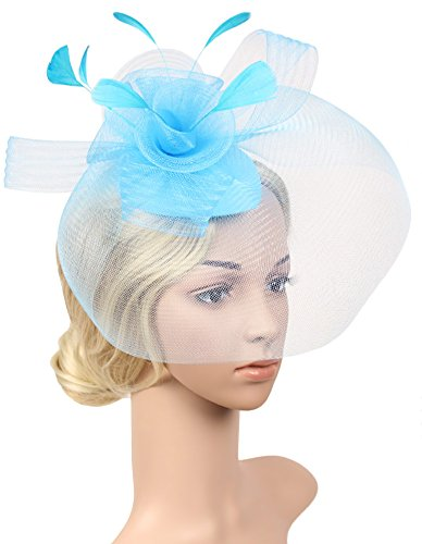 Urban CoCo Women's Elegant Flower Feather and Veil Fascinator Cocktail Party Hair Clip Hat (Light (Feather Light Womens Hat)