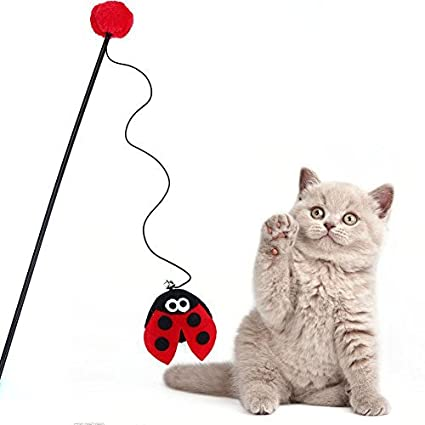 Broadroot Juego de juguetes para gatos, juguetes para gatitos y mascotas, juguete divertido de