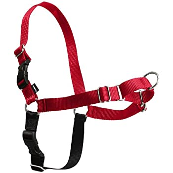 Easy Walk Harness - Small/Medium, Red