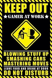 g Sign Video Game Humour Poster (24 x 36 inches) ()