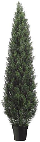 (72 Inch Tall Cedar Topiary in PlasticPot)