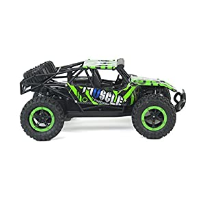 Cross Country Speed Racing Slayer Remote Control Toy Green Rally Buggy RC Car 2.4 GHz 1:16 Scale Size w/ Working Suspension, Spring Shock Absorbers