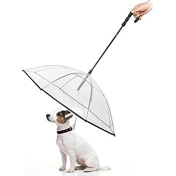Amazon Com Namsan Pet Dog Umbrella Leash Transparent Waterproof