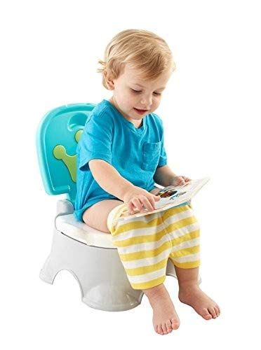 - Fisher-Price Royal Stepstool Potty