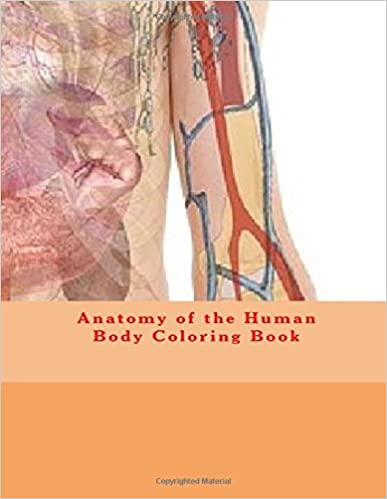 Amazon Com Anatomy Of The Human Body Coloring Book 9781537565187