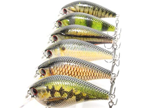 "Lucky Craft LC 1.5 Silent Squarebill Crankbait 2.4/"" 1//2 oz Choice of Colors"
