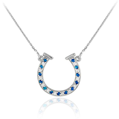 - 14k White Gold Diamond & Blue Sapphire Good Luck Charm Horseshoe Necklace (16 Inches)