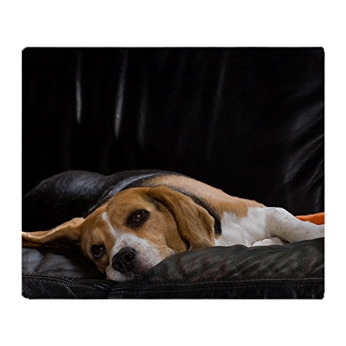 Beagle Fleece - CafePress - Lazy Beagle - Soft Fleece Throw Blanket, 50