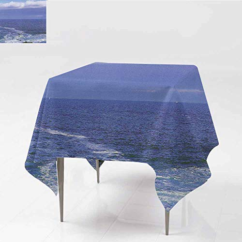 (ZWARRT Table Covers Blue Ocean Water, Horizon View in Open sea,W50 x L50 Square Tablecloth)