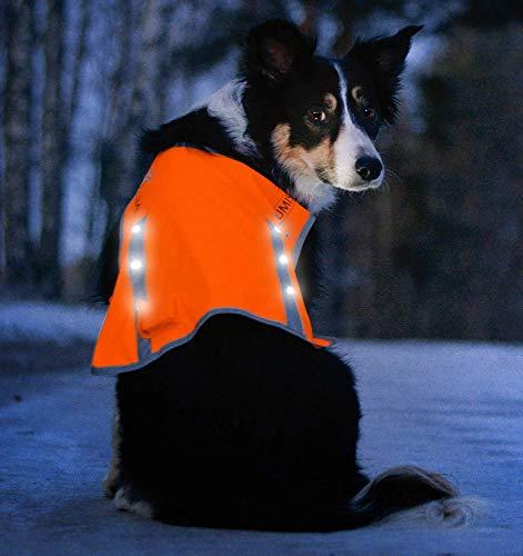 Image of Illumiseen LED Dog Vest   Orange Safety Jacket with Reflective Strips & USB Rechargeable LED Lights   Increase Dog's Visibility When Walking, Running, Training Outdoors (Large, Orange)