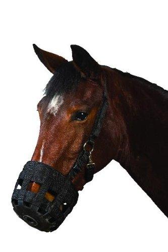 Roma Pony/Horse Grazing Muzzle - Black Weatherbeeta