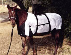 Infrared Magnetic Therapy Horse Jacket, 70""