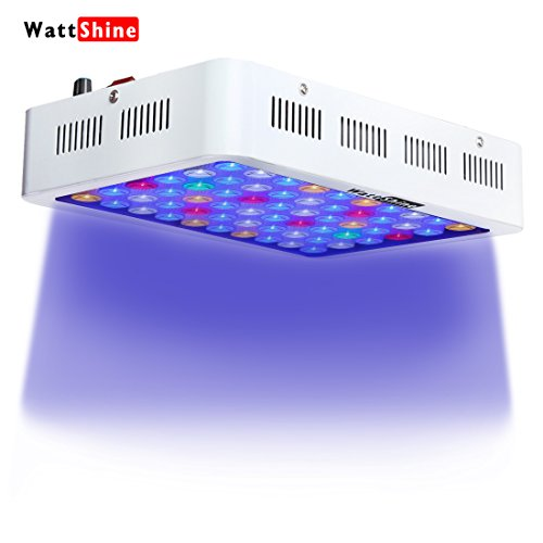 LED Aquarium Light Dimmable 180W Full Spectrum for Coral Reef Grow, Plants Fish Tank Aquarium Decorations Include White & Blue by Wattshine